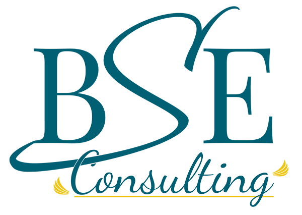 BSE Consulting
